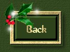Fly Back to Christmas messages